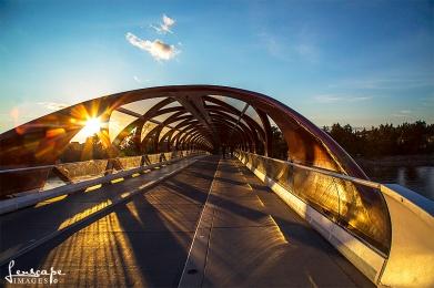 The PEace Bridge, Calgary AB
