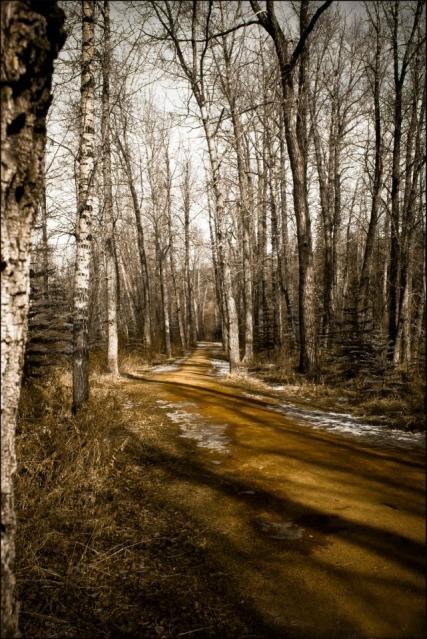 path in cohrane-10-2