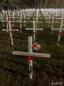 Field of Crosses #1